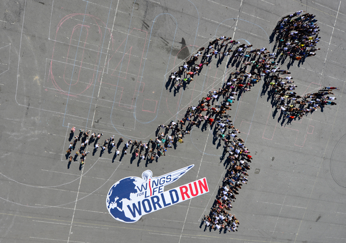 wings for life wolrd run, une course solidaire autour du monde
